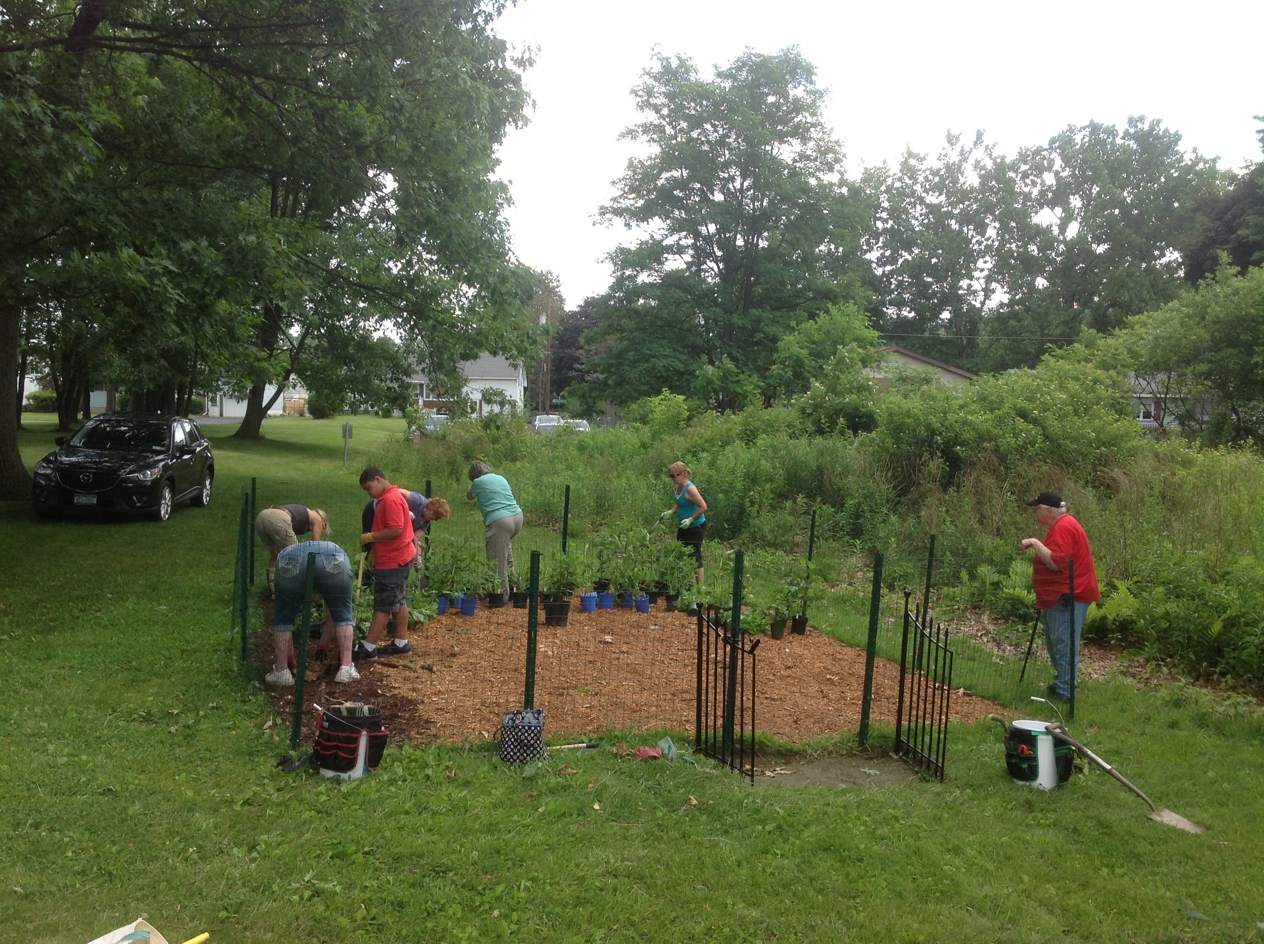 Butterfly Gardening With the Friends of the Woodlawn Preserve