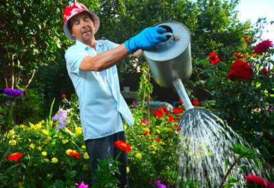 Water-Saving Tips for Lawns and Garden